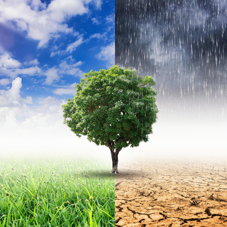 Folgen des Klimawandels sind menschlich verschuldet